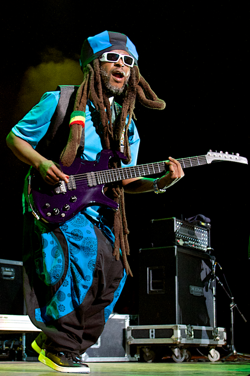 3rd Annual Reggae in the Park The Mann Center  Philadelphia, Pa August 3, 2014  DerekBrad.com