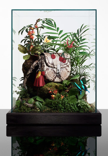 jungle box for Robin Broadbent