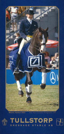 My photo taken at Aachen CHIO 2005 chosen for Tulstorp Dressage Stable's advertising.
