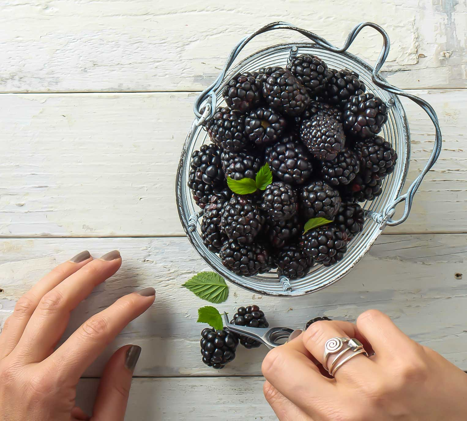 Blackberry-HandsWEB
