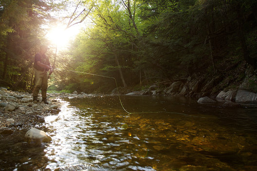 Chris Danforth fishing for native brook trout on the Cold River, Mendon, Vermont.