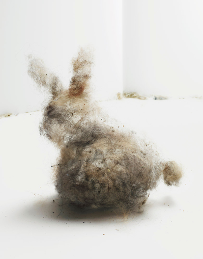 made of real dust bunnies for real simple magazine