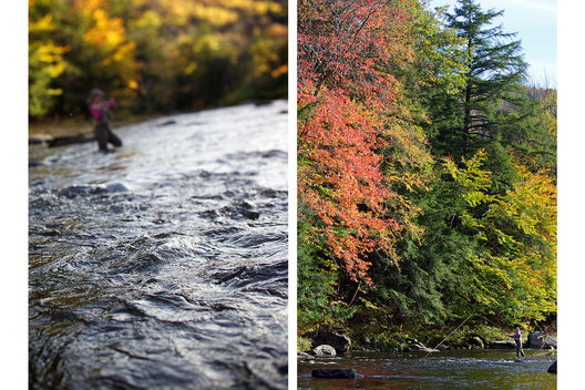 Black River under fall colors, Vermont.