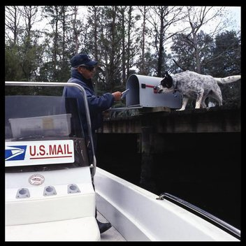 Postman in Magnolia Springs, Alabama. This is the only full time, all-water postal route in US.