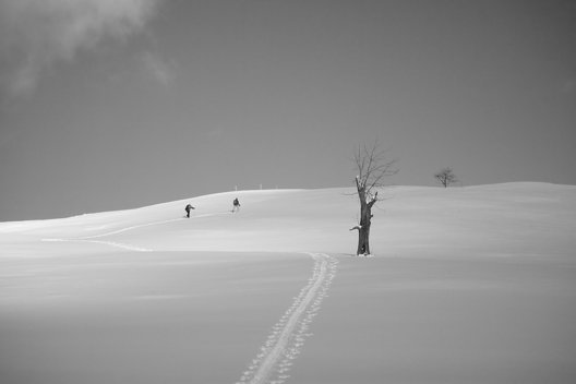 Pasture Skiing in Vermont, 2010