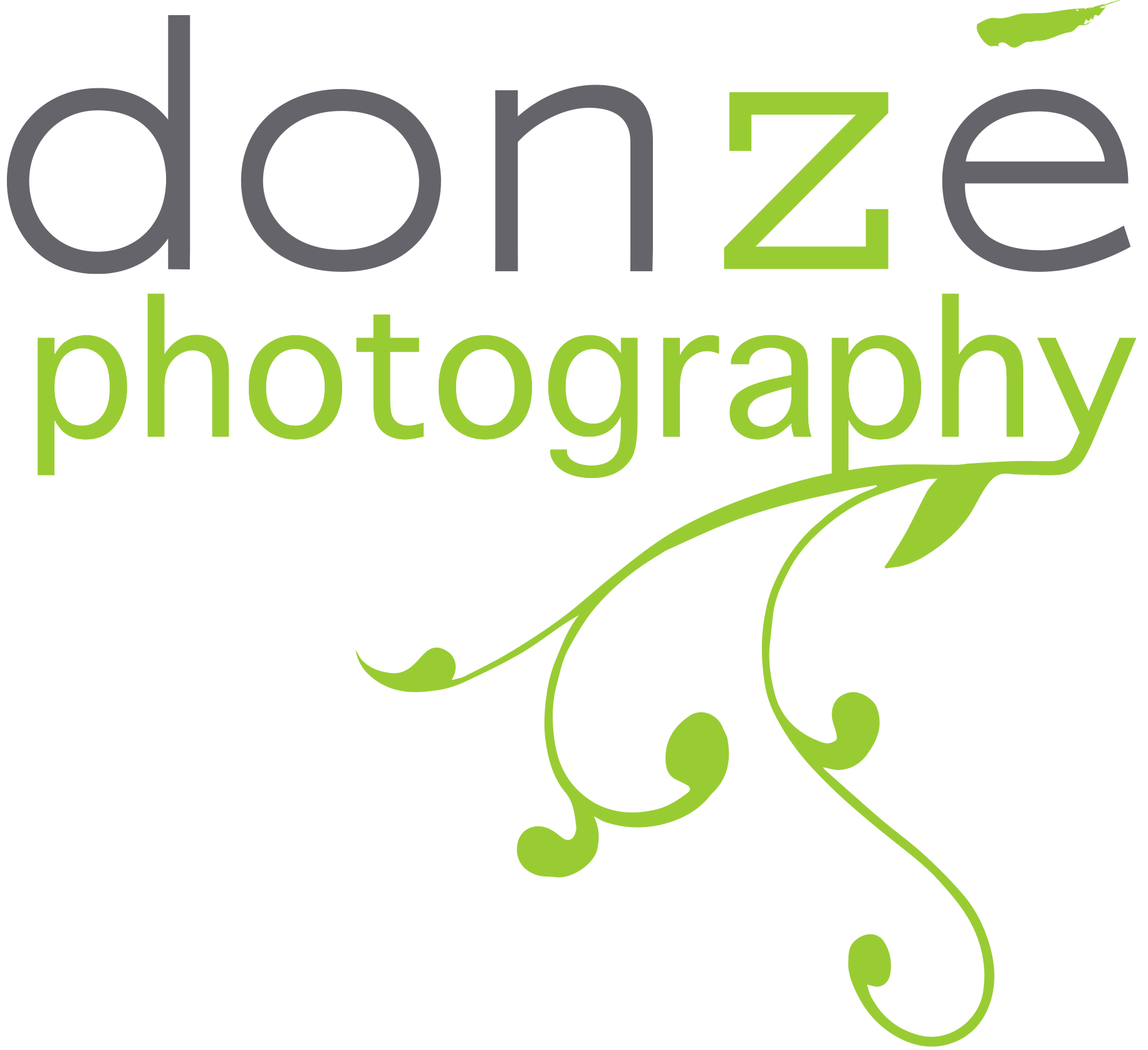 Donze curly branch logo