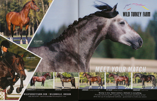 My images illustrating an ad for Wild Turkey Farm 2016