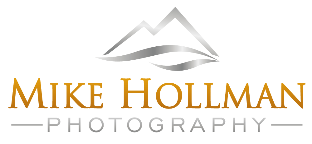 Mike hollman logo