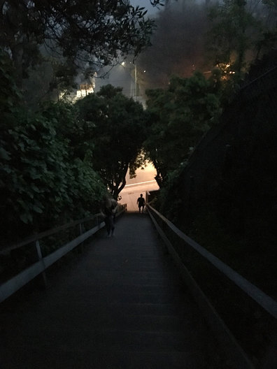 Known as 'The best workout in LA' the Santa Monica stairs is a secret mecca for those in search of a hardcore, caveman- style workout.