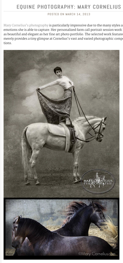 Cavalcade (now Equestrian Culture magazine) wrote: Mary Cornelius's Photography is particularly impressive due to the many styles and emotions she is able to capture.