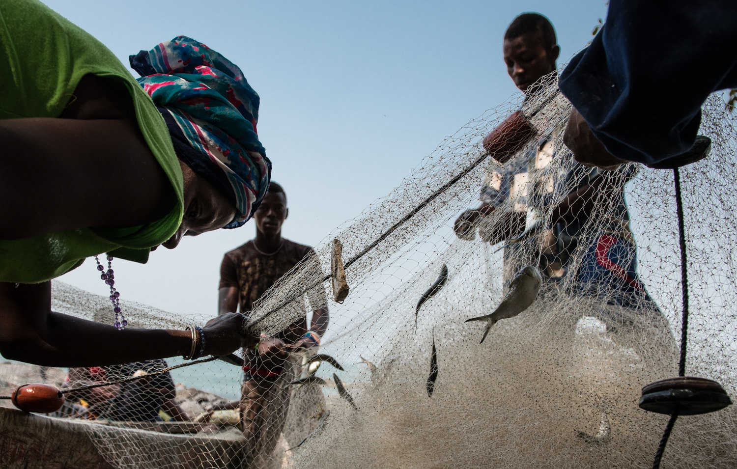 Villagers from John Obey collect the morning's catch from the fishermen's nets.  Fishing is the remote village's livelihood. Catches have declined over the years with the arrival of illegal industrial trawlers.