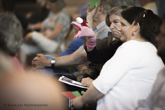 "Constituents at Joe Wilson at a Town Hall in Aiken S.C., April 2017, per statement from Indivisible Midlands, ""We used sock puppets at town halls this year bc our MoCs won't allow signs! Which is ridiculous...hence the puppets."""