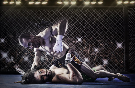 MMA fight in Miami FL