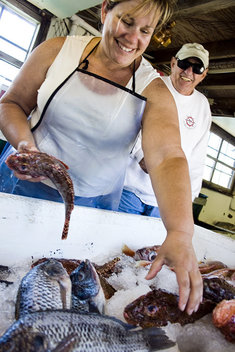 Pearson's Port co-owner Terese Pearson grabs some fresh fish for a customer. Pearson's, located under the PCH bridge in Newport Beach, is the last floating fish market in California.