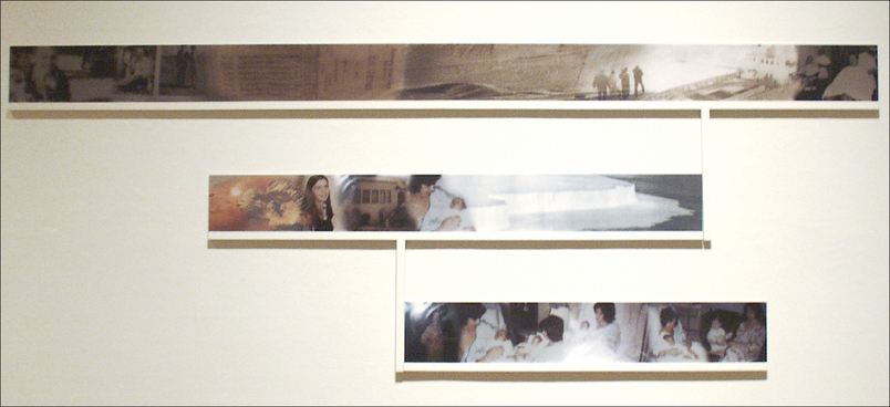 "C-Prints and Wood Structure, 33"" x 89"""