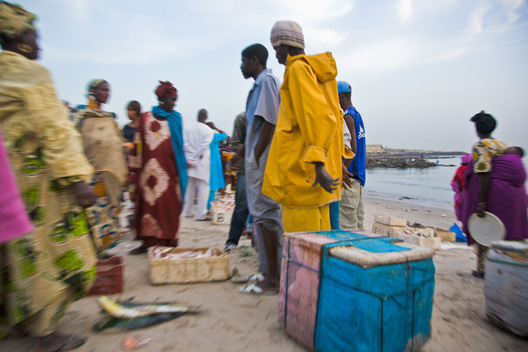 Customers bargain for a good price at this beachside fish market in Dakar, Senegal.
