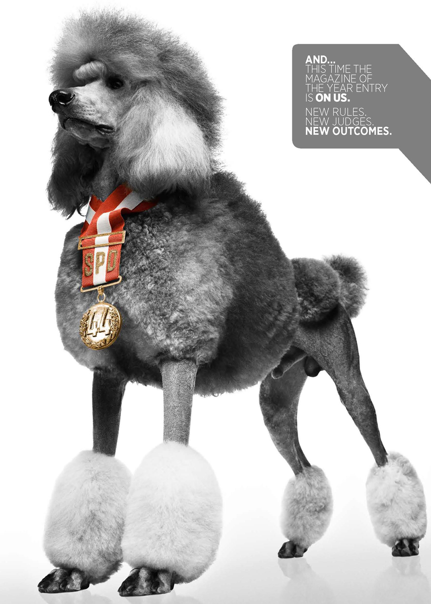 custom medal for the poodle