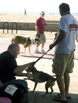 A man and his dog walk by Joshua, his friend Mark and his dog Sparky as Mark takes Sparky for a walk.