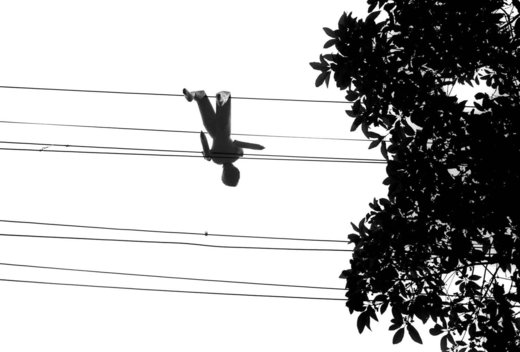 A blow up female sex doll hangs discarded from telephone wires over a Sydney street.