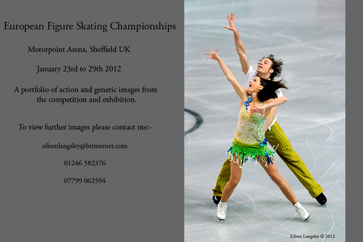 Nathalie Pechalat and Fabian Bourzat (France) competing the Pairs event at the 2012 European Figure Skating Championships at the Motorpoint Arena in Sheffield UK January 23rd to 29th.