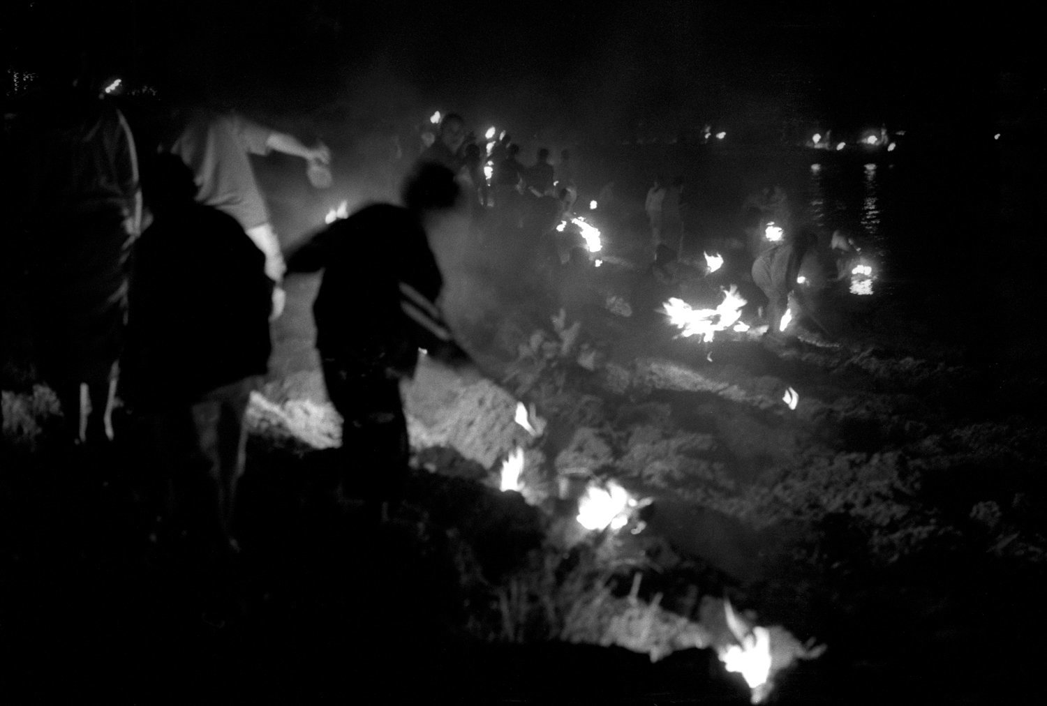 Tamara Voninski / oculi