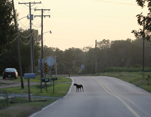Hwy 50 - Widener, Arkansas