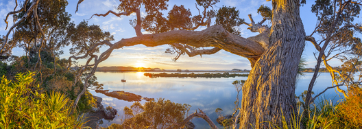 Ngunguru Sunrise, Tutukaka Coast, Whangarei, Northland, North Island, New Zealand