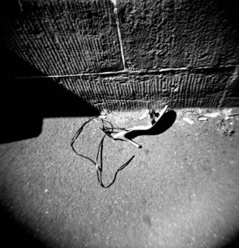 Metropolis: Sydney