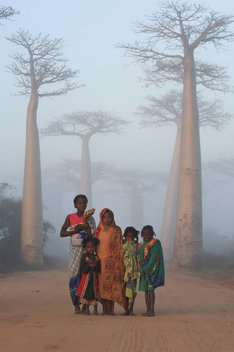 Children pose along Avenue du Baobab near Morondava, Madagascar.