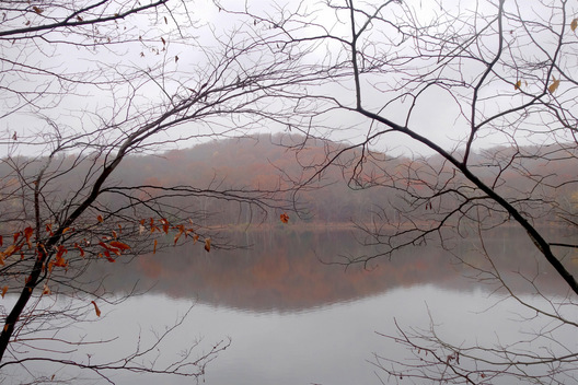 Radnor Lake - Nashville, Tennessee