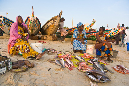 We end the day at Dakar's coastal fish market, where three Fulani women sit behind small piles of fish for sale, colorfully painted fishing boats in the background.
