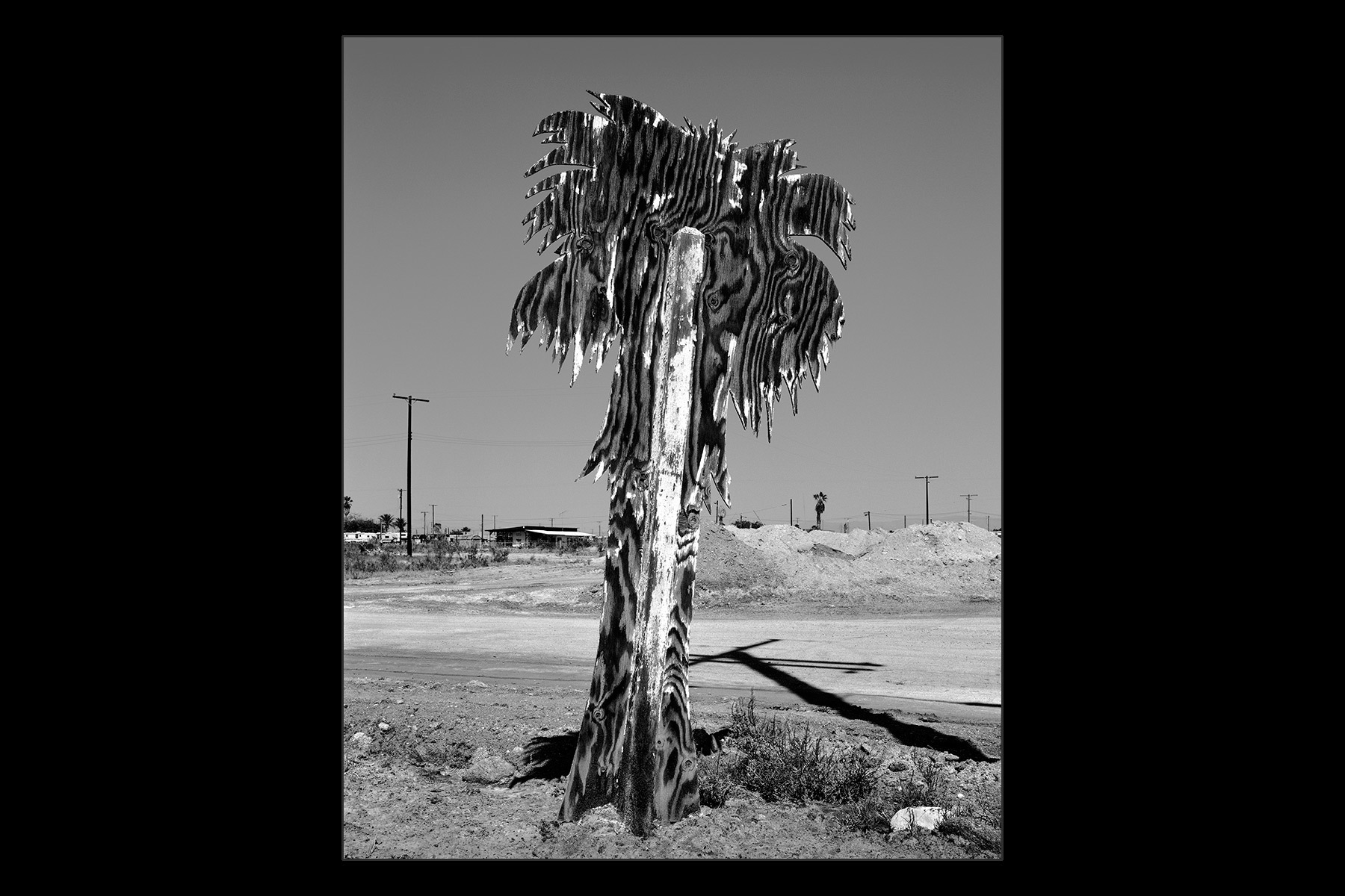plywood tree sign, Salton Sea