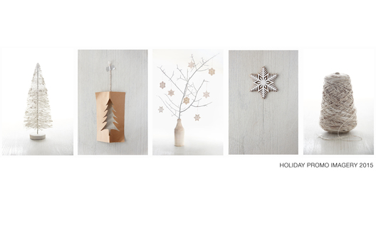 Site Holiday Photography direction for omni-channel promotions
