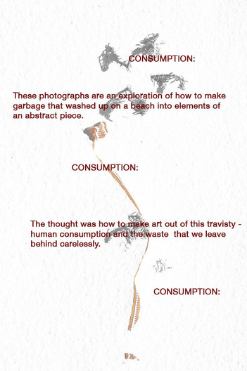 A study of abstracts  found when illuminating the colors of the garbage that washed up on the beach and muting the natural debris  How to make garbage look like abstract art. [Print: 42 x 60]