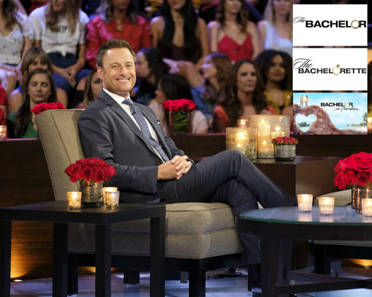 "THE BACHELORETTE: THE MEN TELL - ""The Men Tell All"" - Luke P.'s stunning final standoff in Greece is revealed; and then, the controversial bachelor will take the hot seat opposite Chris Harrison to give his side of the story. The other men, fired up by Luke P.'s self-defense, explode into the vitriolic outburst they have been holding back all season long. The other most memorable bachelors - including Brian, Cam, Connor S., Daron, Devin, Dustin, Grant, Dylan, Garrett, John Paul Jones, Jonathan, Luke S., Matt, Matteo, Mike and Ryan -- return to confront each other and Hannah one last time to dish the dirt, tell their side of the story and share their emotional departures. Finally, as the clock ticks down on Hannah's journey to find love, a special sneak peek of her dramatic final week with Jed, Peter and Tyler C. is featured on ""The Bachelorette: The Men Tell All,"" MONDAY, JULY 22 (8:00-10:01 p.m. EDT), on ABC. (ABC/John Fleenor)