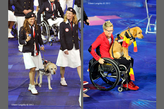 Athletes from the USA and Belgian teams bring their dogs along with them during the Opening Ceremony of the London 2102 Paralympic Games.