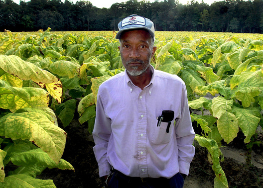 Willie, Farm Foreman - McGees Crossroads, North Carolina