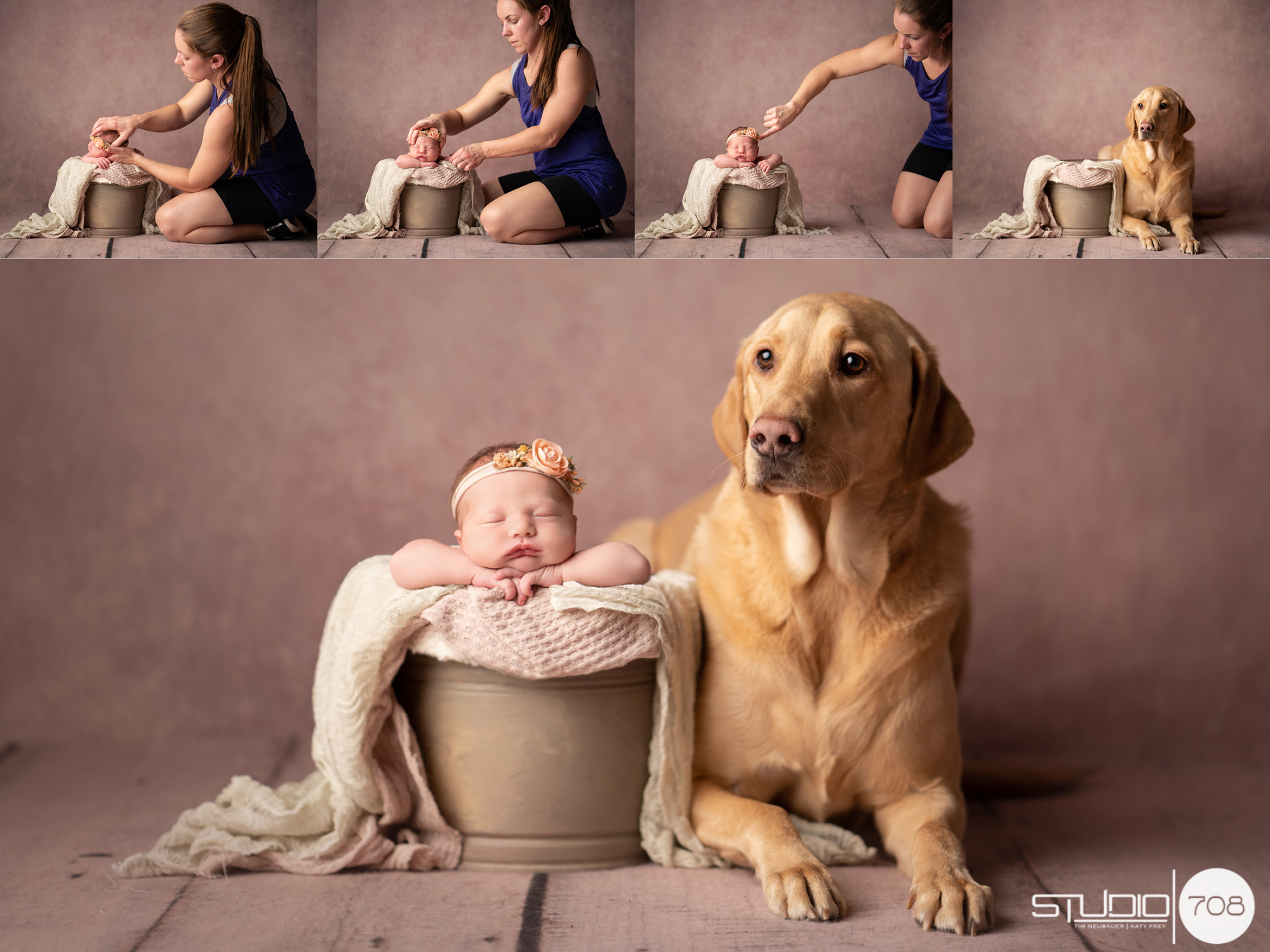Newborn in a bucket with a labrador sitting next to her