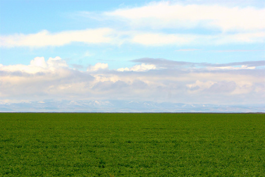 Salinas Valley - Monterey County, California