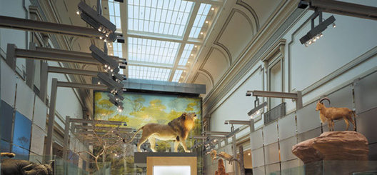 freestanding custom exhibit light fixtures and backlit scrim in historically designated building