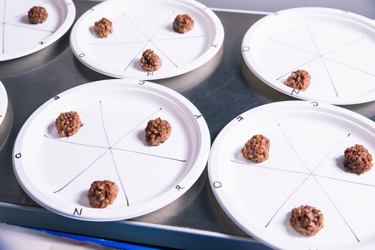 Meatball samples made with Impossible plant-based substitutes are seen at the test kitchen inside Impossible Foods headquarters in Redwood City, Calif. on Thursday, June 20, 2019.