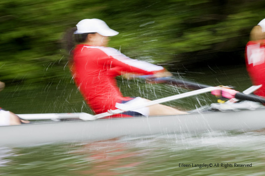 A generic blurred motion image of a women's race at the 2010 Women's Henley Regatta.