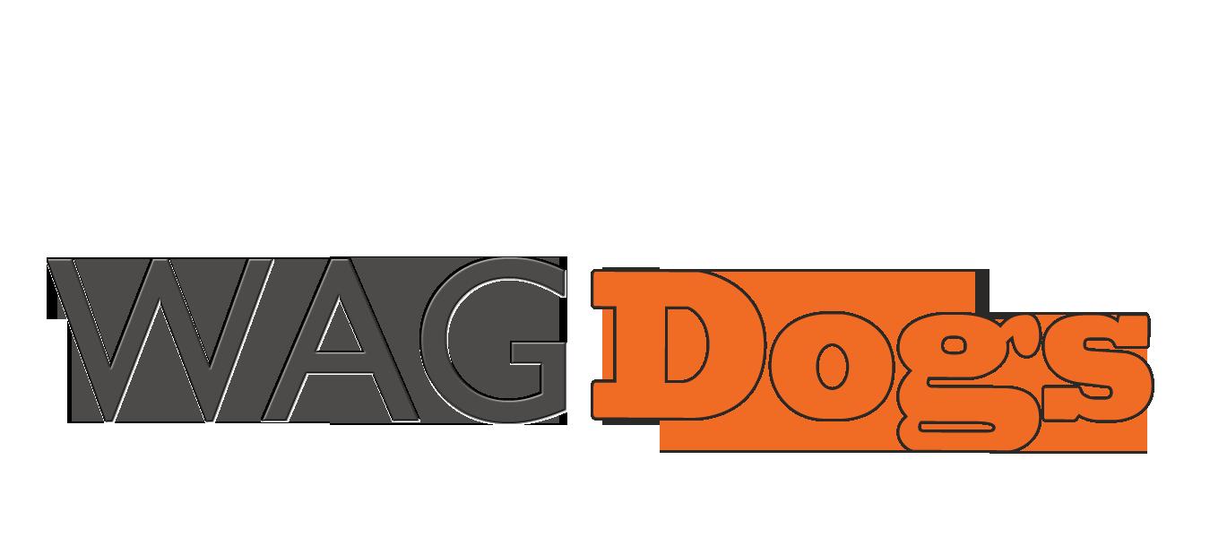 Bio | Calgary dog training and behaviour solutions