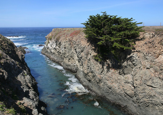 Pt. Cabrillo - Mendocino County, California