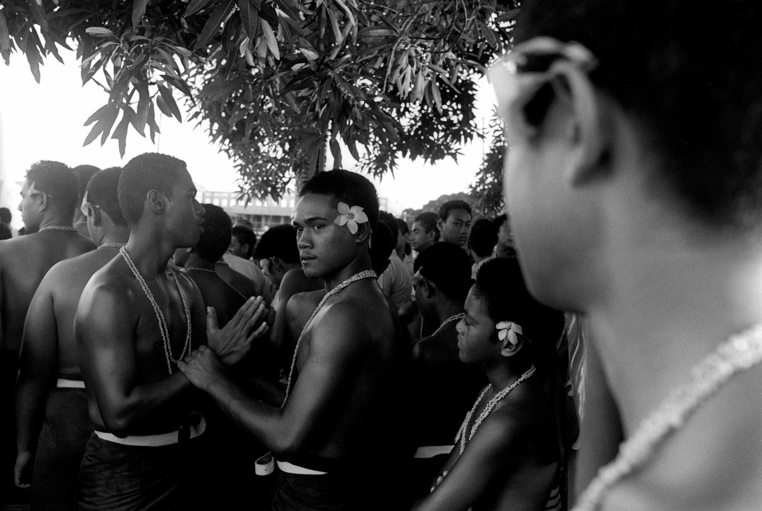 Tamara Voninski / oculi / vu