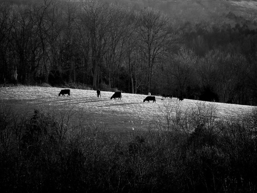 Grant County, Kentucky