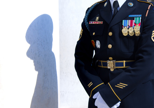 Honor Guard - Tomb of The Unknown Soldier - Washington, DC