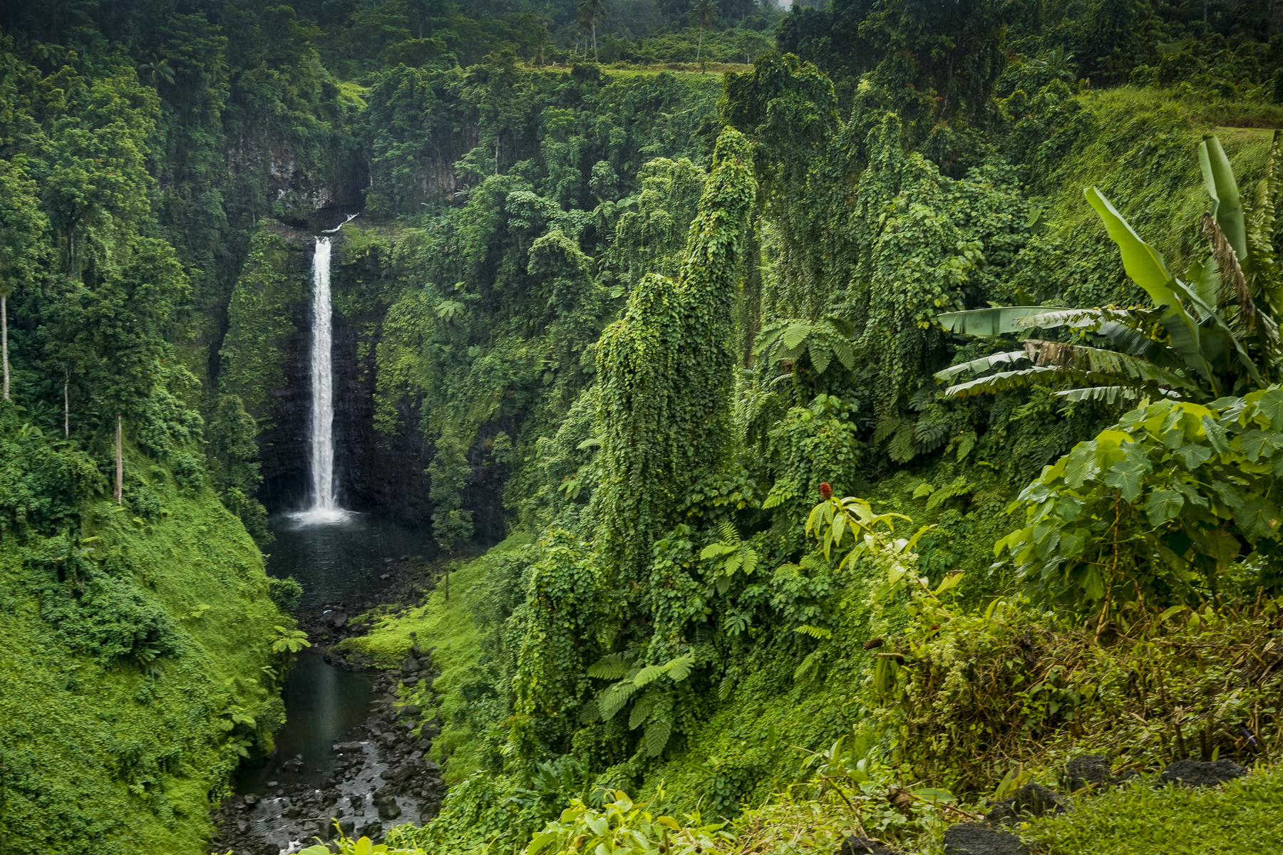 One of the many waterfalls to be found when exploring Samoa