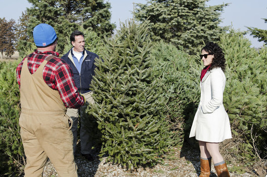 Rick Santorum and his daughter at Howell Tree Farm to to pick out a tree for his Iowa campaign office.