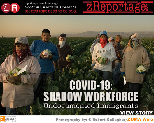 Covid-19; Shadow Workforce- Undocumented Immigrants